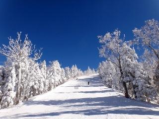 ボードもOK!連休でもリフト待ちなし!穴場の長野県スキー場