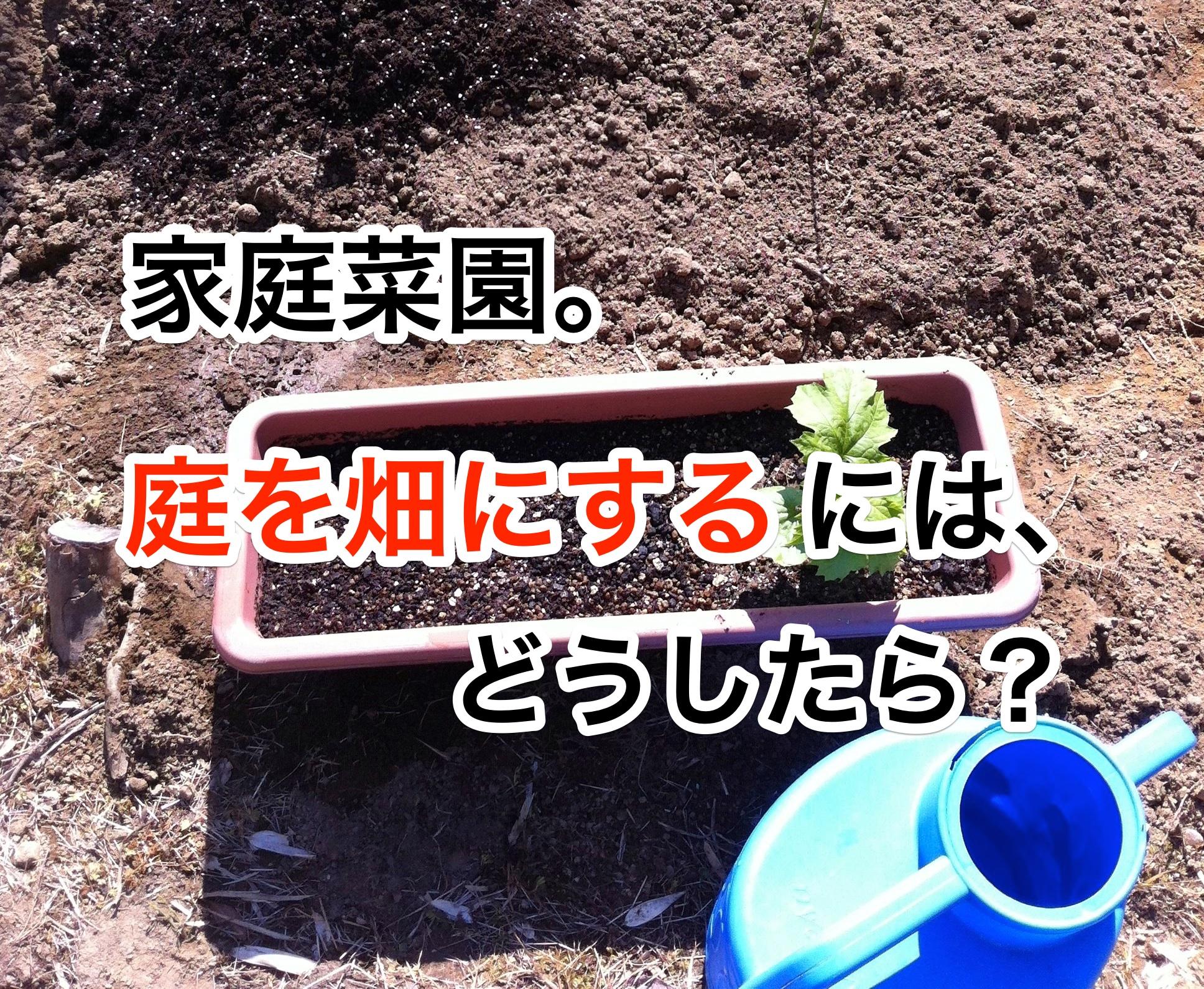 家庭菜園 庭を畑にする方法 やり方は?