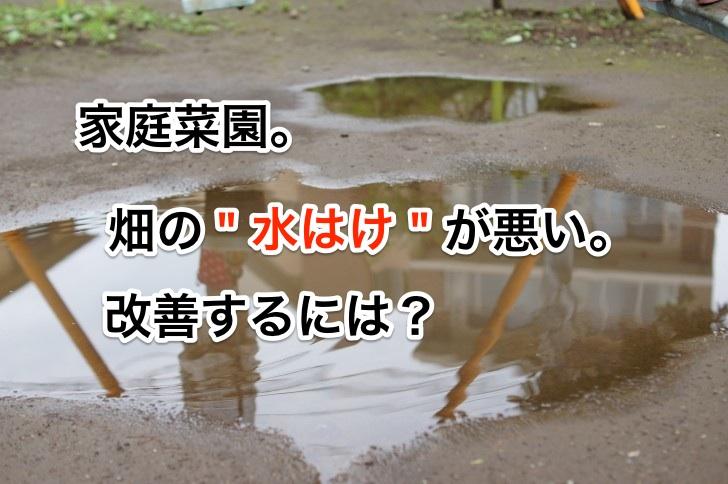 """『家庭菜園』畑の""""水はけ""""が悪い。改善するには?"""