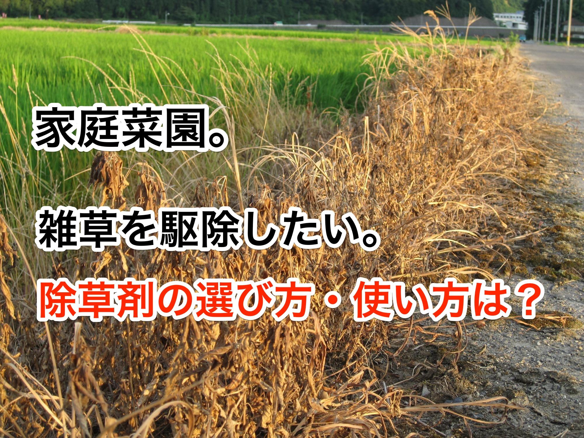 家庭菜園。雑草を駆除したい。除草剤の選び方・使い方は?