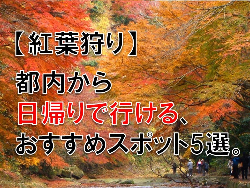 【紅葉狩り】都内から日帰りで行ける、おすすめスポット5選。